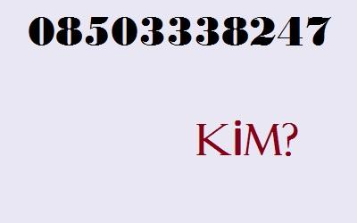 08503338247