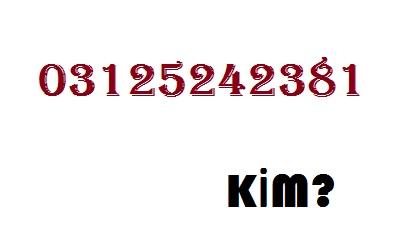 03125242381