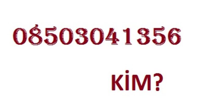 08503041356