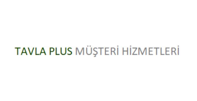Tavla Plus Çağrı Merkezi İletişim Müşteri Hizmetleri Telefon Numarası