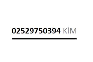 02529750394